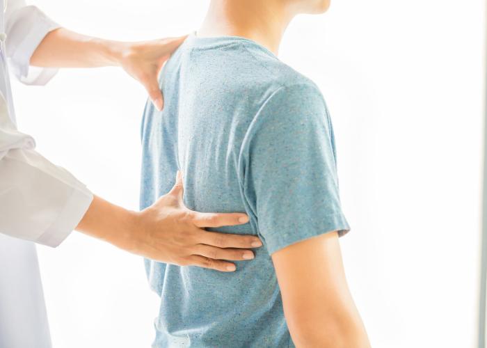 Fisiatria, Fisioterapia e Ortopedia